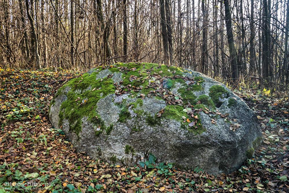 t. Witold Ochał, głaz koło Groblorza, Diabli Kamień