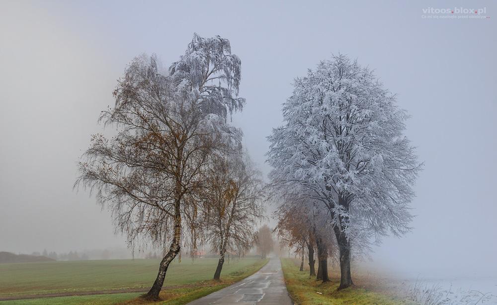 Fot. Witold Ochał wycinki pór roku