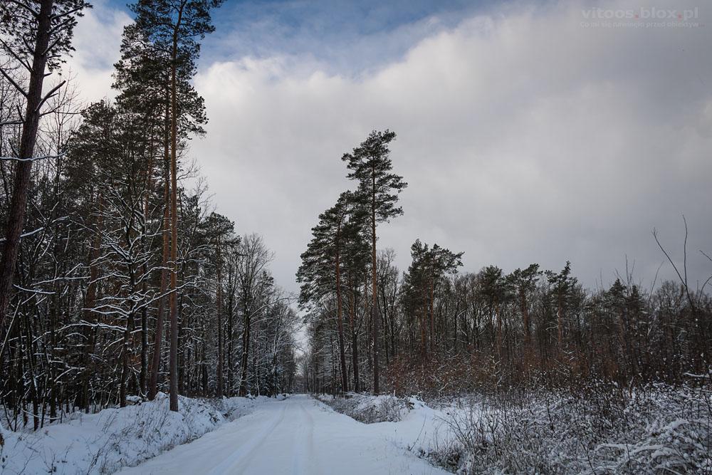 Fot. Witold Ochał, granica zachmurzenia warstwowego stratus