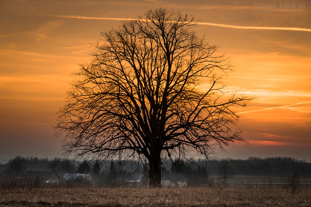 Fot. Witold Ochał, zachód słońca w Szkodnej