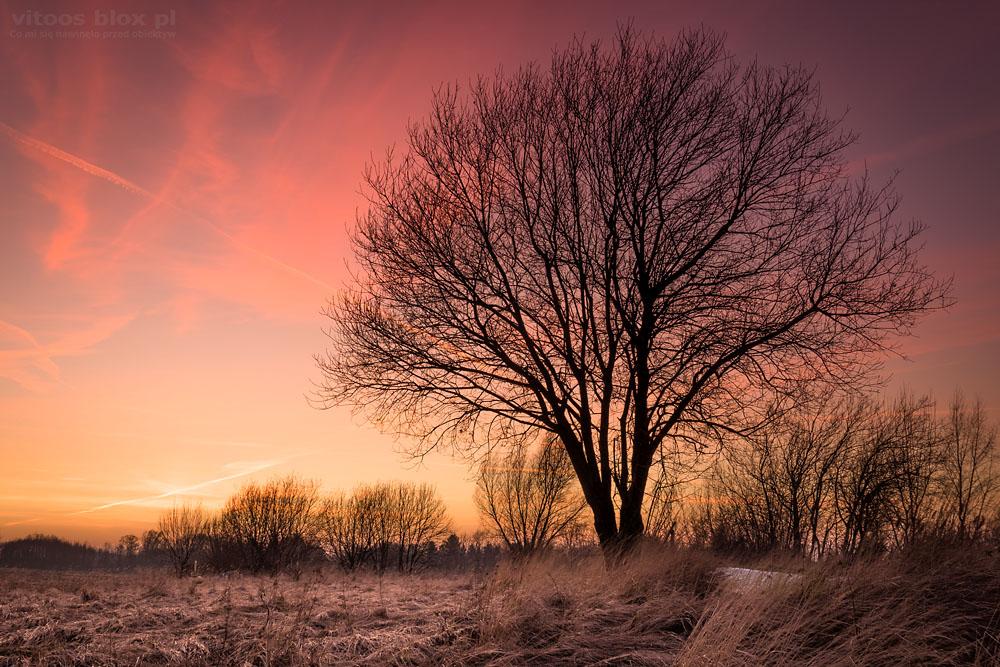 Fot. Witold Ochał, czerwony zachód słońca, Szkodna