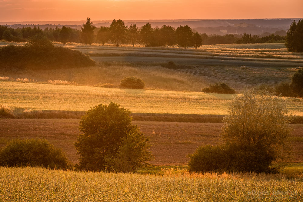 Fot. Witold Ochał, zachód słońca, Zagorzyce