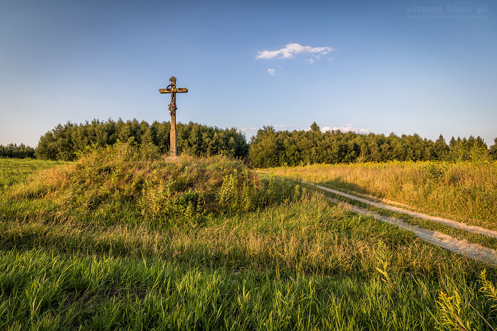 Fot. Witold Ochał, spacer po zagorzyckich polach