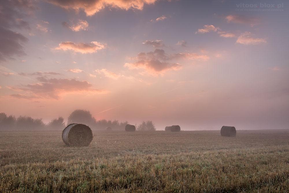 Fot. Witold Ochał, Szufnarowa, wschód słońca na ściernisku