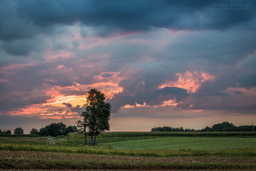 Fot. Witold Ochał, zachód słońca, Gnojnica
