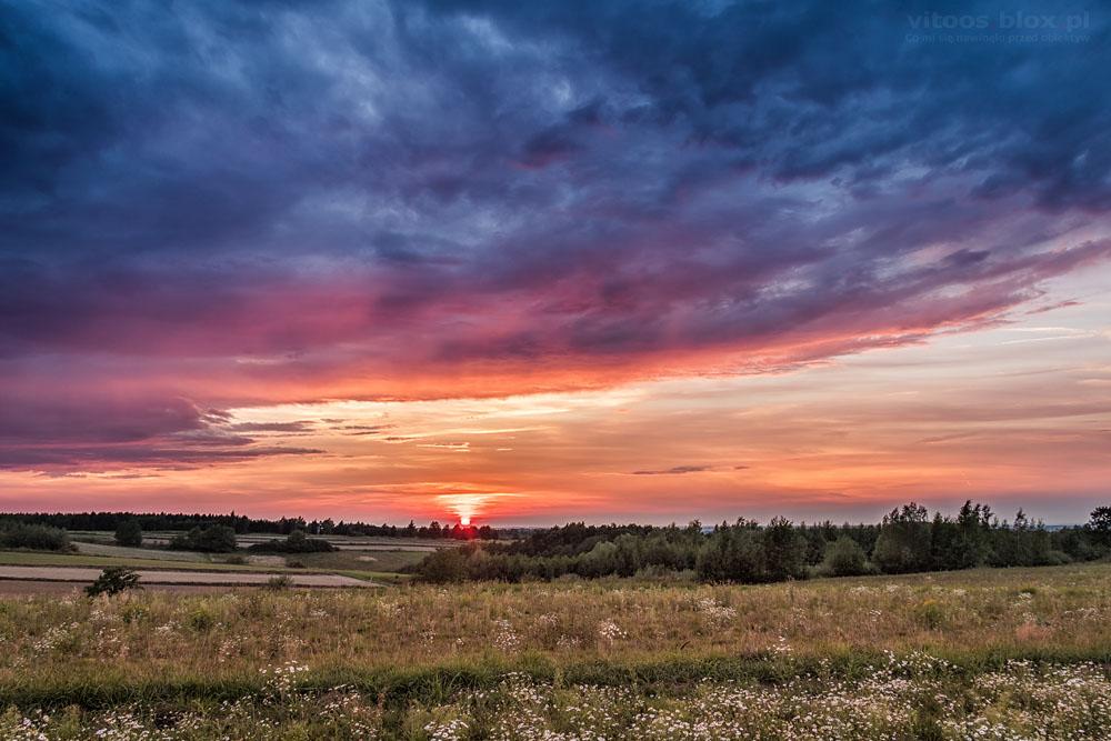 Fot. Witold Ochał, Zagorzyce