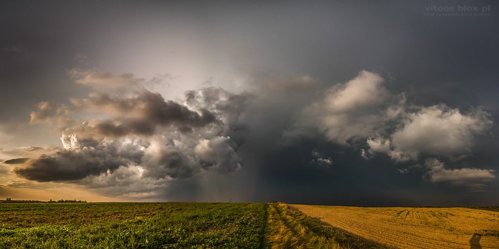 Fot. Witold Ochał, burza, Trzciana