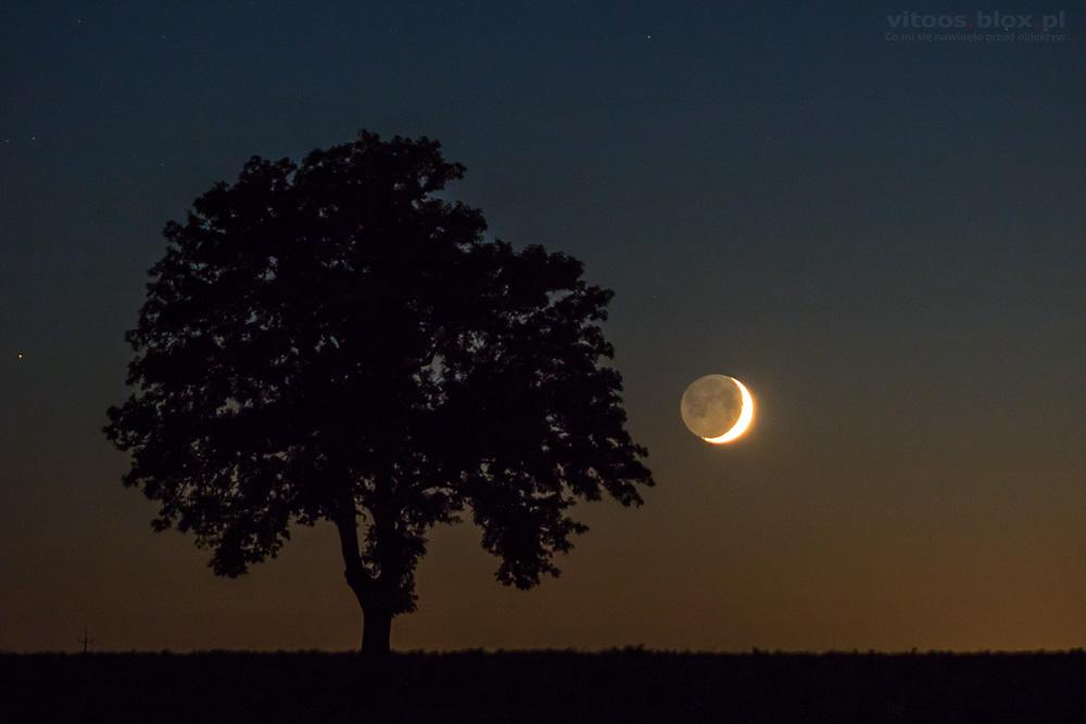 Fot. Witold Ochał, zachód Księżyca, Góra Ropczycka