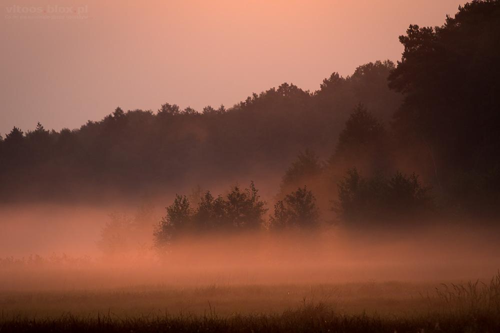 Fot. Witold Ochał, wschód słońca, Czarna Sędziszowska