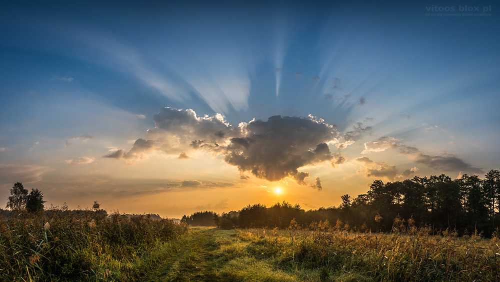 Fot. Witold Ochał, cienie chmur, Czarna Sędziszowska