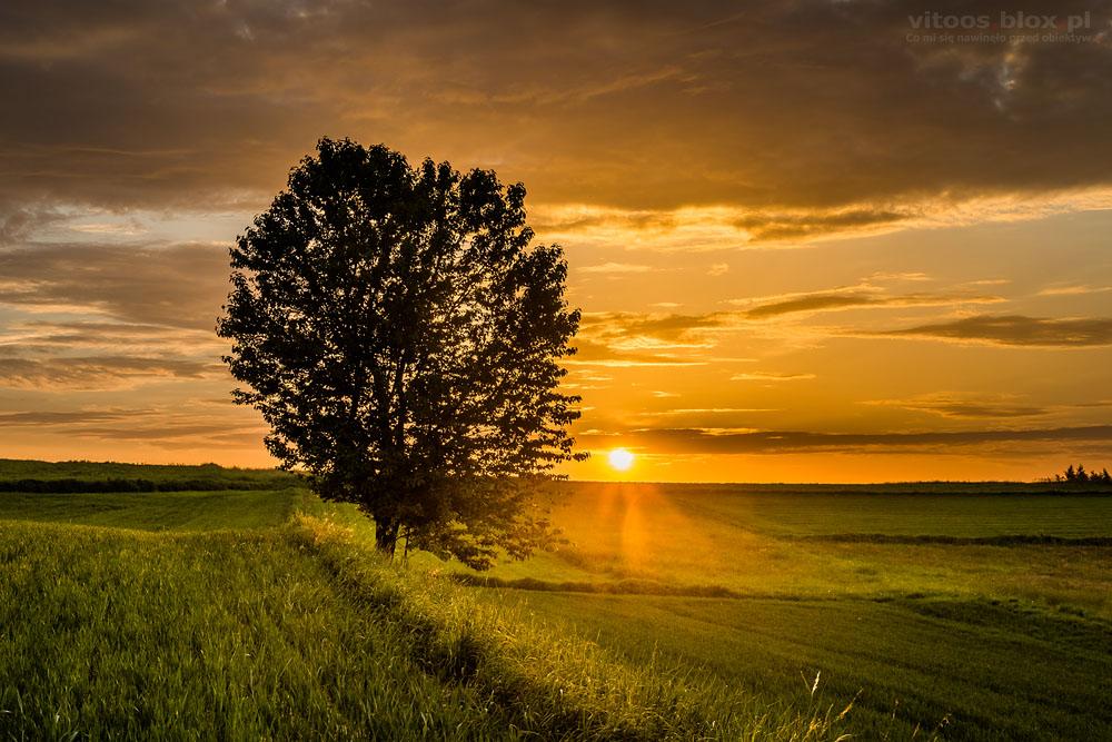 Fot. Witold Ochał, Zagorzyca, zachód słońca