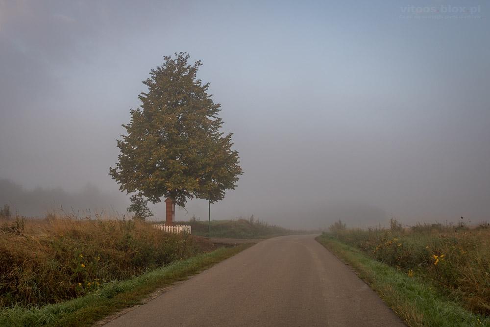 Fot. Witold Ochał, mgła